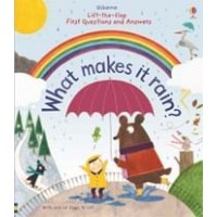What makes it rain?  Lift-the-Flap First Questions and Answers