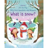 What is snow?  Lift-the-flap Very First Questions and Answers
